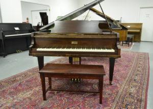Những thông tin cần biết về đàn piano Apollo
