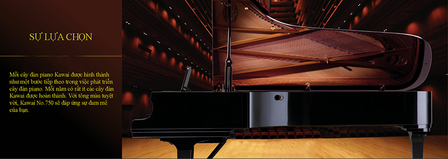 cach-cham-soc-dàn-piano