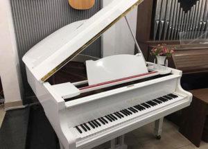 Giới thiệu các loại đàn piano cơ phổ biến hiện nay